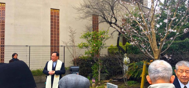 Exalumnos de Japón celebran la Primavera
